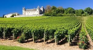 la Borgogna